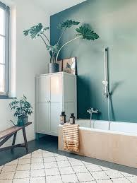 neue farbe im bad bath badezimmer pflanze