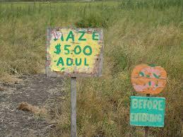 Pumpkin Patch Half Moon Bay Yelp by Alice U0027s Travel Adventures Muzzi U0027s Ranch Pumpkin Patch And Corn Maze