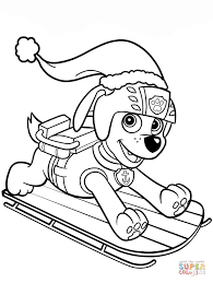 Zuma On Sled Skye Flying From PAW Patrol