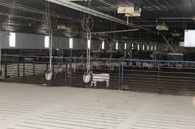 Krikke Family Has Engineered Way To Good Farm Stewardship - Farm ... Best 25 Barns Ideas On Pinterest Red Barns Country And Illinois Contract Pig Farmer Work Is Lowpaying Physically Davis County Fair Rentals Gallatin Fairgrounds Barnsstalling Krikke Family Has Engineered Way To Good Farm Stewardship Farm Manchester Wedding Venues Reviews For Walnut Grove Progress The Old Barn A New Turn Track Pitracercom Langlade Wisconsin Farms Sale Marathon Cuomaptmentbarnwestlinnordcbuilders3jpg 1100733