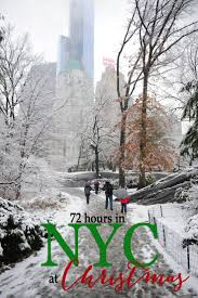 Christmas Tree Disposal New York City by 97 Best New York New York Images On Pinterest Cities Travel