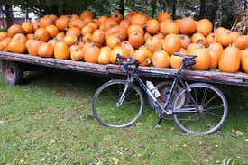 Turkey Pumpkin Push Ins by Pumpkin Fuel Recipes Rocket Fuel Foods