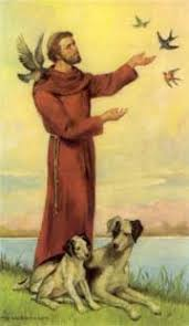 299 best st francis of assisi images on st francis