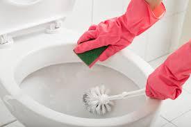 toilette stinkt nach kanal was tun
