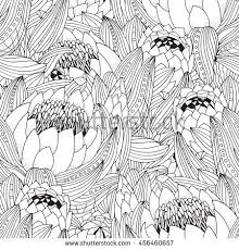 Coloring Book Page For Adult And Children Seamless Pattern With Protea Flower Art King