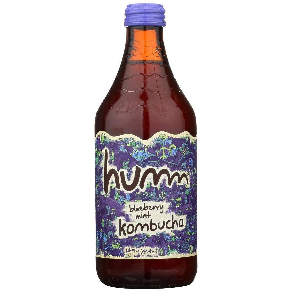 Humm Blueberry Mint Kombucha - 14oz