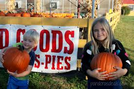 Pumpkin Patch Winchester Virginia by Barnyard Kingdom In Lancaster Pa See Mom Click