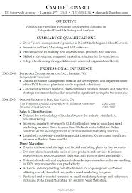 Summary For A Resume Examples Example Of Professional On Resumes Functional