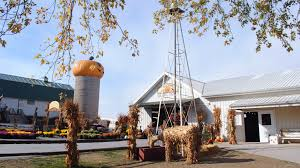 Pumpkin Patch Rides by Best Pumpkin Patches Near Chicago 2017
