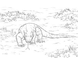 Click To See Printable Version Of Walking Komodo Dragon Coloring Page