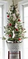 Plantable Christmas Trees Columbus Ohio by 27 Best Christmas Trees Images On Pinterest Christmas Trees