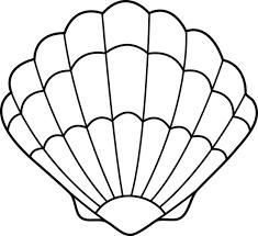 seashell clipart 497
