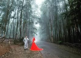 Wedding Hutan Pinus Mangunan