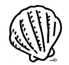Seashell Clip Art Gallery