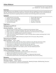 Resume Summary Samples Account Manager Packed