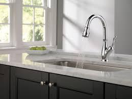 Delta Leland Kitchen Faucet Manual by Venetian Centerset Delta Leland Kitchen Faucet Single Handle Pull
