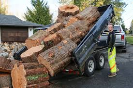 100 Stevens Truck Driving School Giving Away Firewood Put These Guys In The Global Spotlight
