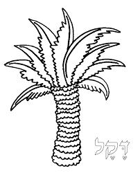 Torah Tots Alef Bet Palmtree Coloring Page