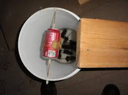 tom cat mouse trap 84 best mouse trap images on mouse traps mice and