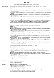 Download Services Business Development Manager Resume Sample As Image File