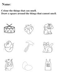 Worksheets Five Senses Preschool Worksheet Free Printable Kindergarten