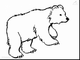 Impressive Bear Coloring Pages With Page And Preschool