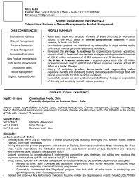 International Sales CV Samples