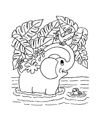 Jungle Animal Detailed Coloring Pages
