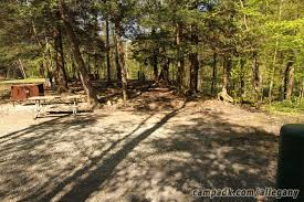 Allegany State Park Bathrooms by Allegany State Park Campsite Photos
