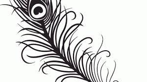 Peacock Drawing Black And White Peacock Feather Clipart Black And