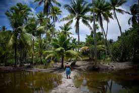 Sinking Islands In The South Pacific by A Remote Pacific Nation Threatened By Rising Seas The New York