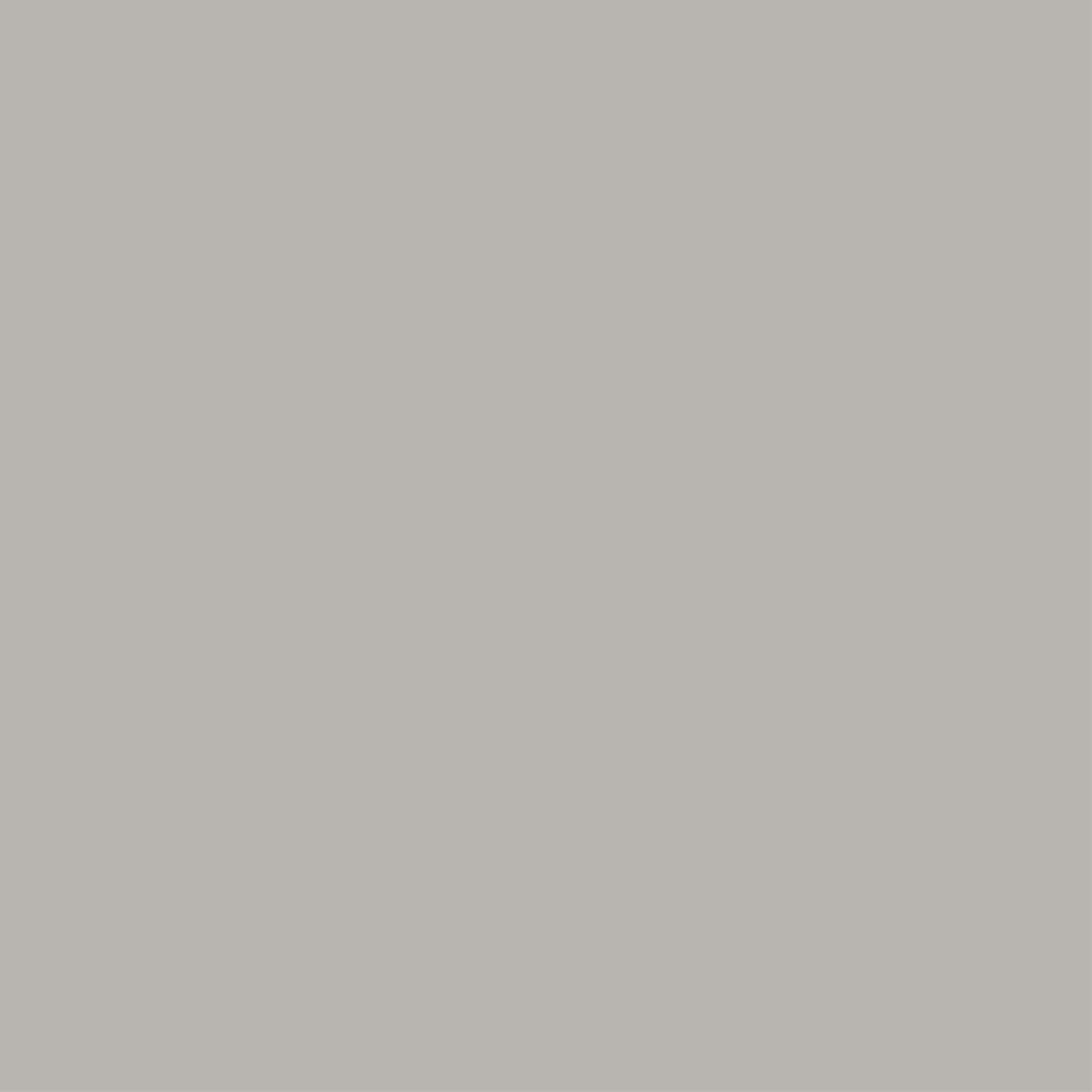 Farrow & Ball 100ml Sample Pot Lamp Room Gray No. 88