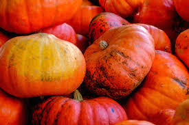 Ashland Berry Farm Halloween 2017 by 2017 Guide To Pumpkin Picking And Fall Fun In The Rva