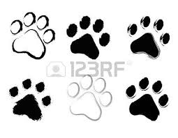cat paw prints paw prints stock photos pictures royalty free paw prints images