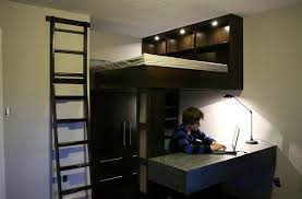 Inspiring Contemporary Designing Beds With Desks Underneath