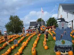 Monrovia Pumpkin Patch by 135 Best Pumpkin Farm Market Images On Pinterest Pumpkin Farm