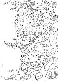 Blowfish Fish Color Page Animal Coloring Pages Plate Sheet Printable