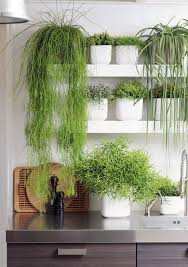 30 Awesome Indoor Garden Planting Projects To Start In The New Year 23