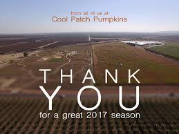 Pumpkin Patch Near Dixon Ca by Cool Patch Pumpkins Home Facebook