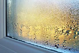 luftfeuchtigkeit senken und schimmel vermeiden mit diesen tipps