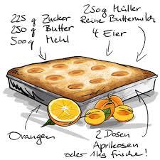 aprikosen kuchen vom blech backen molkerei müller