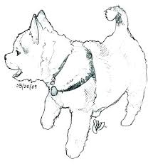 Husky Coloring Page Puppy Pages Free Printable