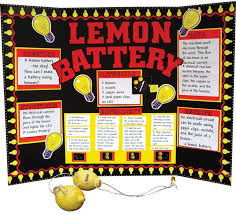 Science Fair Presentation Ideas Experiment Display Teach