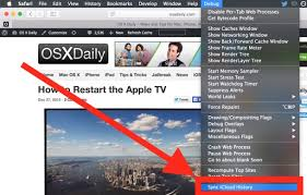 How to Forcibly Sync Safari iCloud History from Mac OS X