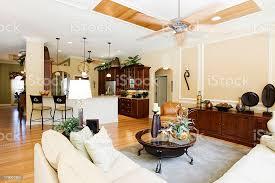 moderne wohnzimmer mit holzboden sofa und stühle fan stockfoto und mehr bilder architektonisches detail
