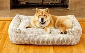 jax bones jax bones dog beds