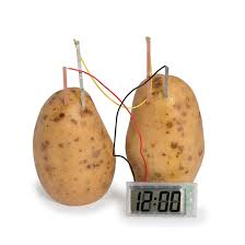 component potato battery the light bulb 110lbs of potatoes