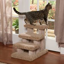 cat stairs pet stairs and rs 3 step carpeted stairs by beatrise pet