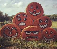 Southeast Wisconsin Pumpkin Patches by The 10 Best Pumpkin Patches In Wisconsin In 2016