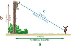 Judging Distances From Elevated Stands Brilliant Tree Stand Target Pertaining To 15